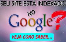 Seu Site Está Indexado No Google – Veja Como Saber!