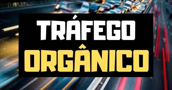 Tecnicas_de_SEO_Trafego_Organico_e_Trafego_Pago